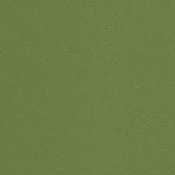 skai Toledo EN olive | Cuero artificial | Hornschuch
