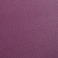 skai Tundra orchidee | Faux leather | Hornschuch