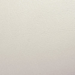skai Tundra pearl | Faux leather | Hornschuch