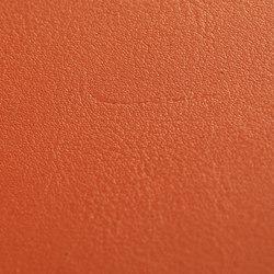 skai Tundra karneol   Faux leather   Hornschuch