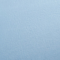 skai Tundra dolphin   Faux leather   Hornschuch