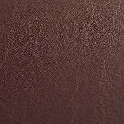skai Tundra bordeaux   Faux leather   Hornschuch