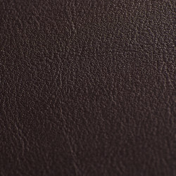 skai Tundra choco   Faux leather   Hornschuch