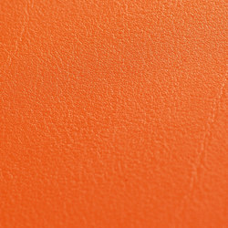skai Tundra orange | Cuero artificial | Hornschuch