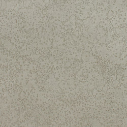 Planet   Wallcoverings   Zimmer + Rohde