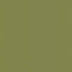 skai Toledo EN lime | Similicuir | Hornschuch