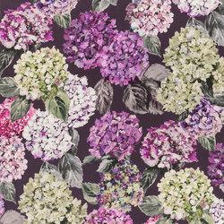 Madhuri Fabrics | Sudara - Damson | Tissus pour rideaux | Designers Guild
