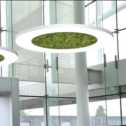 Luce Verde Anello | General lighting | Sattler