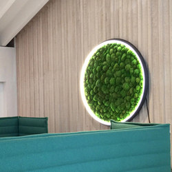 Luce Verde Slim | Wall lights | Sattler