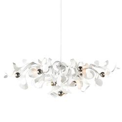 Kelp chandelier oval | Ceiling suspended chandeliers | Brand van Egmond
