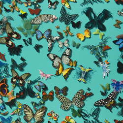 Carnets Andalous Fabrics | Butterfly Parade - Lagon | Tessuti tende | Designers Guild