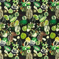 Nouveaux Mondes Fabrics | Soft Manaos - Onyx | Vorhangstoffe | Designers Guild