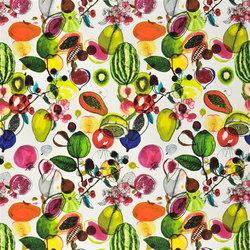 Nouveaux Mondes Fabrics | Manaos - Perroquet | Tissus pour rideaux | Designers Guild