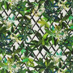 Nouveaux Mondes Fabrics | Canopy - Malachite | Curtain fabrics | Designers Guild