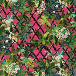 Nouveaux Mondes Fabrics | Canopy - Grenade | Tessuti tende | Designers Guild