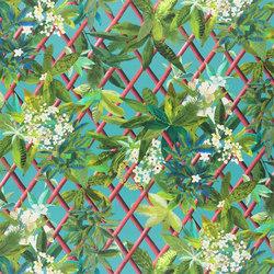Nouveaux Mondes Fabrics | Canopy - Turquouise | Curtain fabrics | Designers Guild