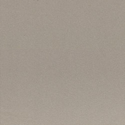 Earth grigio 2 | Ceramic tiles | Casalgrande Padana