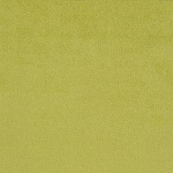 Molveno Fabrics | Ruzzini - Lemongrass | Curtain fabrics | Designers Guild