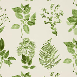 Kaori Fabrics | Jindai - Moss | Curtain fabrics | Designers Guild