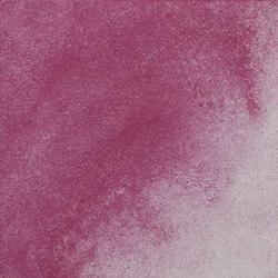 VeloTerra | Viola mesopotamia | Paints | Matteo Brioni