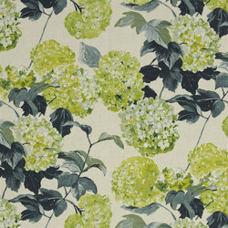 Pavonia Fabrics | Cassandra - Moss | Tessuti tende | Designers Guild