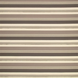 Racine Fabrics   Palladio - Driftwood   Tejidos para cortinas   Designers Guild
