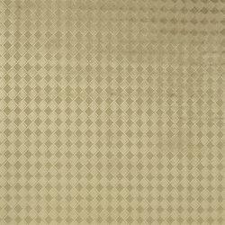 Roumier Fabrics | Vandevelde - Silverbirch | Vorhangstoffe | Designers Guild