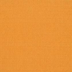 Bolsena Fabrics | Bolsena - Zinnia | Tessuti tende | Designers Guild