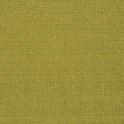 Bolsena Fabrics | Bolsena - Moss | Curtain fabrics | Designers Guild