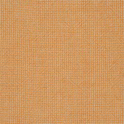 Brera Filato Fabrics | Brera Filato - Saffron | Tessuti tende | Designers Guild