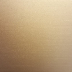Finiture Champagne Satin | Paneles / placas de metal | YDF