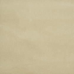 Signature English Riding Velvet Fabrics | Palomino | Curtain fabrics | Designers Guild
