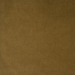 Signature English Riding Velvet Fabrics   Chestnut   Vorhangstoffe   Designers Guild