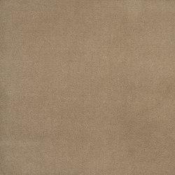 Signature English Riding Velvet Fabrics | Bridle | Vorhangstoffe | Designers Guild