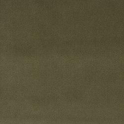 Signature English Riding Velvet Fabrics | Truffle | Curtain fabrics | Designers Guild