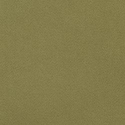 Santiago Fabrics | Santiago - Fern | Curtain fabrics | Designers Guild