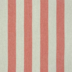 Brera Rigato Stripe Fabrics | Brera Largo - Pimento | Curtain fabrics | Designers Guild