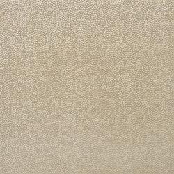 Indigo Bleu Fabrics | Pontine - Oyster | Vorhangstoffe | Designers Guild