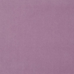 St. James's Fabrics | Royal Velvet - Orchid | Vorhangstoffe | Designers Guild