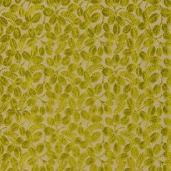 Savio Fabrics | Calaggio - Moss | Vorhangstoffe | Designers Guild