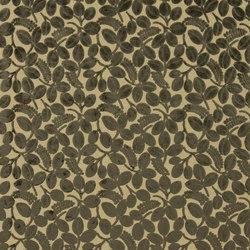 Savio Fabrics | Calaggio - Roebuck | Vorhangstoffe | Designers Guild