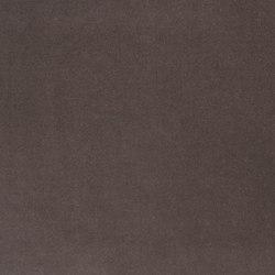 Cassia Fabrics | Cassia - Moleskin | Tessuti tende | Designers Guild