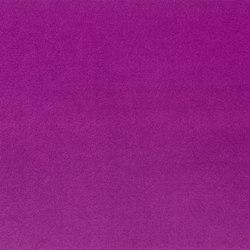 Cassia Fabrics | Cassia - Damson | Tejidos para cortinas | Designers Guild