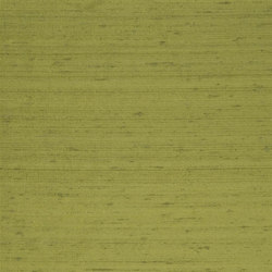 Chinon Fabrics | Chinon - Sage | Curtain fabrics | Designers Guild