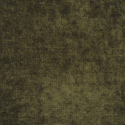 Zaragoza Fabrics | Zaragoza - Olive | Vorhangstoffe | Designers Guild