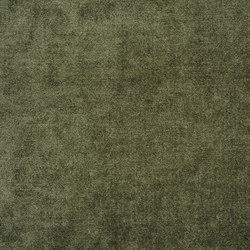 Zaragoza Fabrics | Zaragoza - Forest | Curtain fabrics | Designers Guild