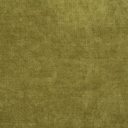 Zaragoza Fabrics | Zaragoza - Moss | Curtain fabrics | Designers Guild