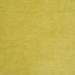Zaragoza Fabrics | Zaragoza - Acacia | Tejidos para cortinas | Designers Guild