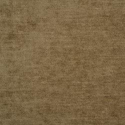 Zaragoza Fabrics | Zaragoza - Acorn | Curtain fabrics | Designers Guild