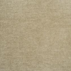 Zaragoza Fabrics | Zaragoza - Seagrass | Curtain fabrics | Designers Guild